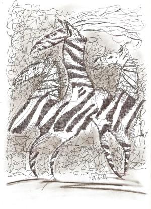 MR - Pohľad na Zebru